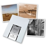 9.125 in. x 3.875 in. Museo® Artist Cards Sets (24 Sets)