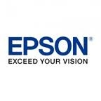 Epson ink cleaning cartridge 150 mil, Stylus Pro WT7900 ONLY